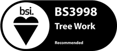 Tree-Work Logo